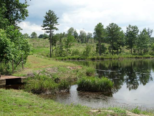 Tbd I-73, Candor, NC 27229 (MLS #199937) :: On Point Realty