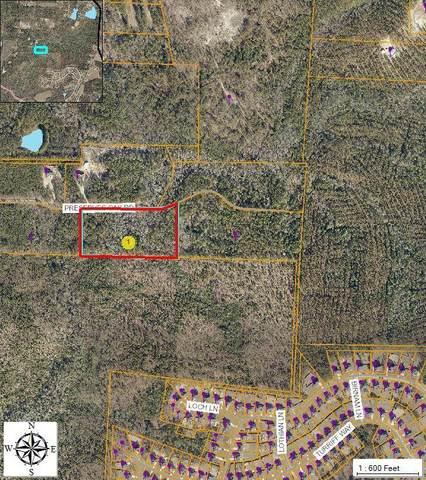 220 Preserves Oak Road, Vass, NC 28394 (MLS #200027) :: Pinnock Real Estate & Relocation Services, Inc.