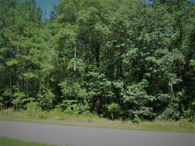 Tbd North State Lane Lot 48, Rockingham, NC 28379 (MLS #201112) :: Towering Pines Real Estate