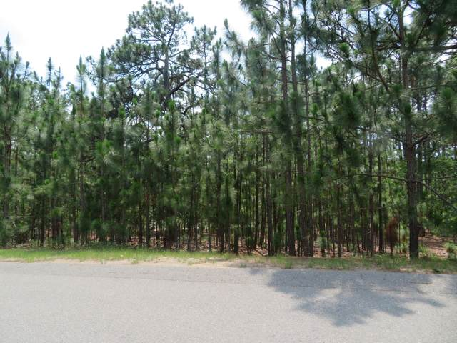 184 Woodbine Way, Whispering Pines, NC 28327 (MLS #201160) :: On Point Realty