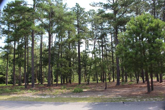 101 Schever Road, West End, NC 27376 (MLS #201184) :: Towering Pines Real Estate