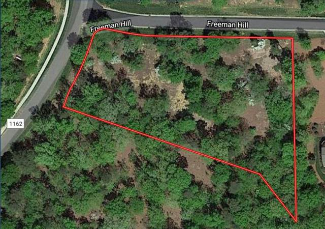 124 Freeman Hill, New London, NC 28127 (MLS #201225) :: Pinnock Real Estate & Relocation Services, Inc.