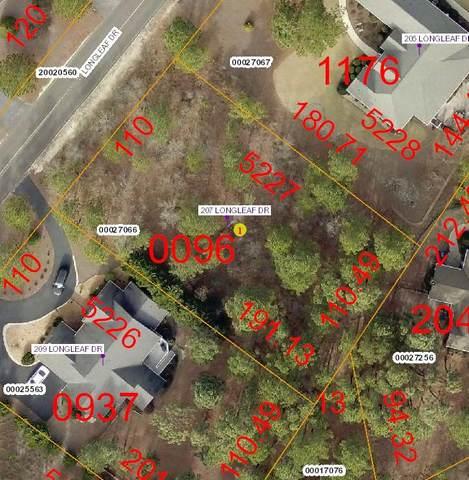 207 Longleaf Drive, West End, NC 27376 (MLS #201373) :: Towering Pines Real Estate