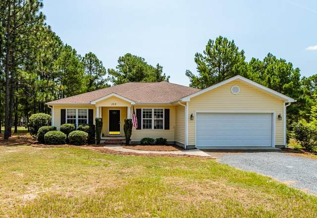 103 Perkins Lane, Pinebluff, NC 28373 (MLS #201419) :: Pinnock Real Estate & Relocation Services, Inc.