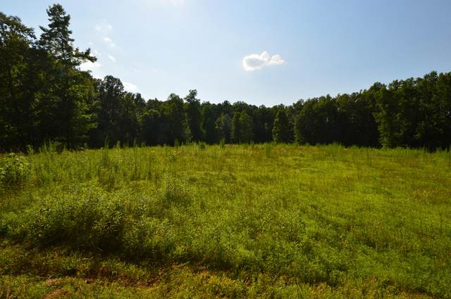 295 Foxwood Close Road, Cameron, NC 28326 (MLS #201597) :: Pinnock Real Estate & Relocation Services, Inc.