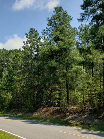 Lot 36 Peach Orchard Road, Wagram, NC 28396 (MLS #201854) :: Pinnock Real Estate & Relocation Services, Inc.