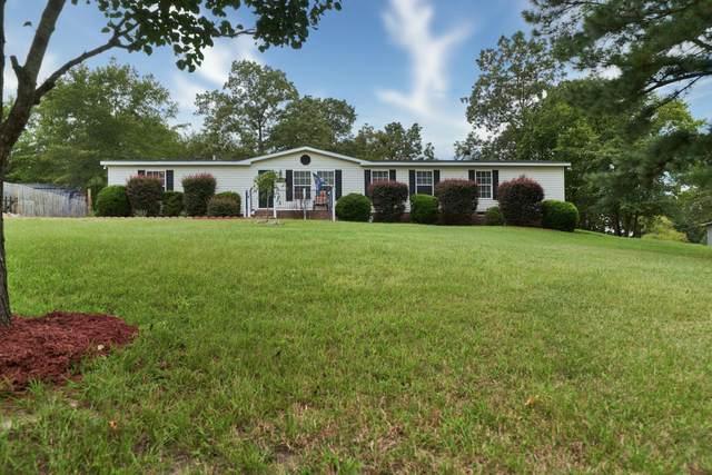 145 Hannah Lori Drive, Cameron, NC 28326 (MLS #202103) :: Pinnock Real Estate & Relocation Services, Inc.