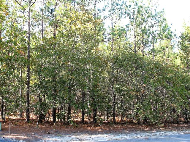 113 James Drive, West End, NC 27376 (MLS #202192) :: Towering Pines Real Estate