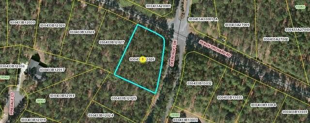 Lot 26 Deercroft Drive, Wagram, NC 28396 (MLS #202286) :: Pinnock Real Estate & Relocation Services, Inc.