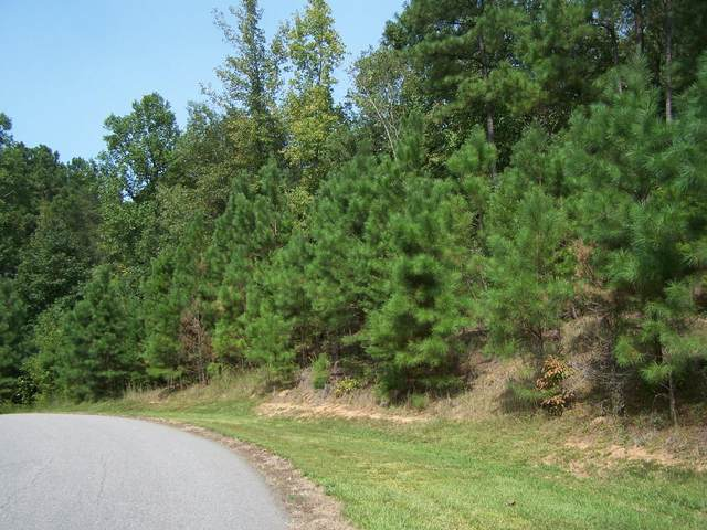 Tbd Riverhills Trail Lot 76, Rockingham, NC 28379 (MLS #202384) :: Towering Pines Real Estate