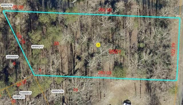 Tbd Kim Lane, Carthage, NC 28327 (MLS #202631) :: Pinnock Real Estate & Relocation Services, Inc.
