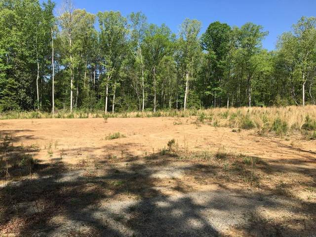 160 Lakeside Drive, Rockingham, NC 28379 (MLS #202728) :: Pinnock Real Estate & Relocation Services, Inc.