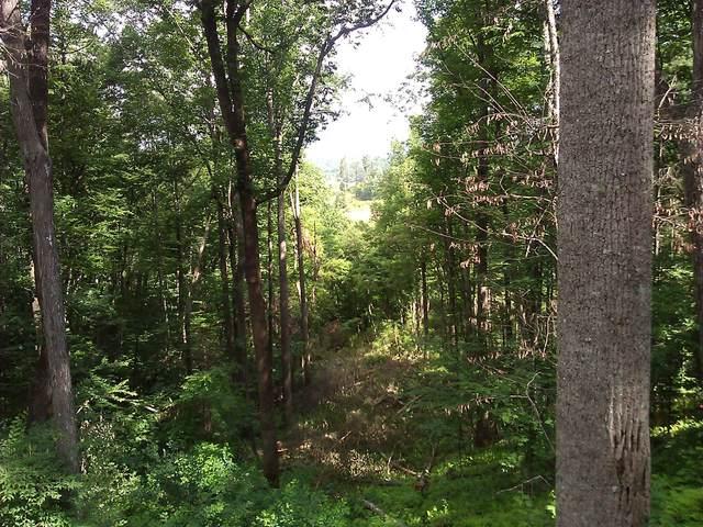 Lot 67/68 Cedar Court, Fleetwood, NC 28626 (MLS #202754) :: Pines Sotheby's International Realty