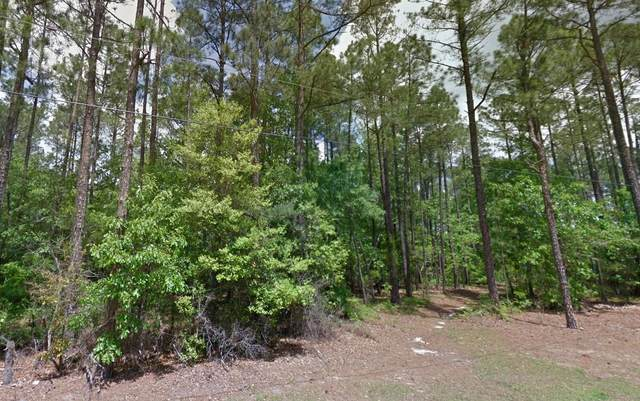 Tbd Country Lane, Ellerbe, NC 28338 (MLS #202918) :: Pinnock Real Estate & Relocation Services, Inc.