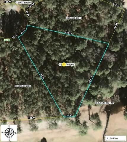 14 Beetree Lane, Wagram, NC 28396 (MLS #202990) :: Pinnock Real Estate & Relocation Services, Inc.