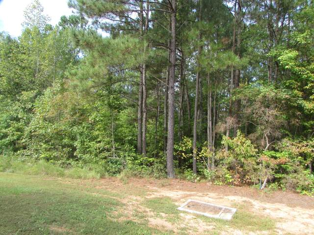 Lot 25 Watsons Way, Rockingham, NC 28379 (MLS #203148) :: Towering Pines Real Estate