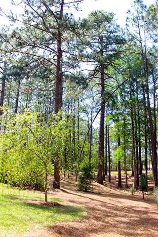 45 Martin Drive, Whispering Pines, NC 28327 (MLS #203207) :: Towering Pines Real Estate