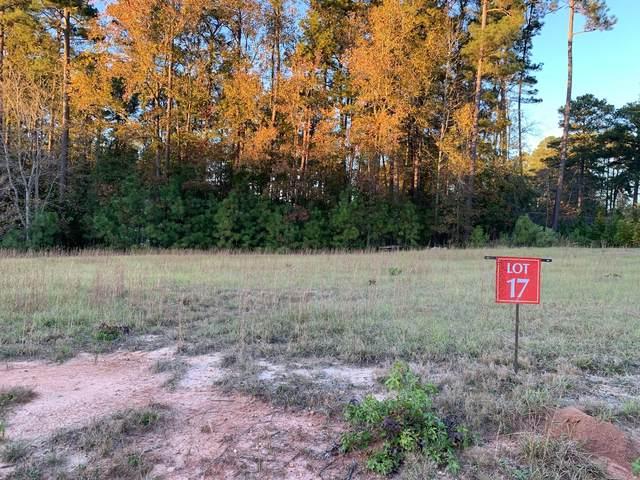 3022 Carrington Lane, Sanford, NC 27330 (MLS #203340) :: On Point Realty
