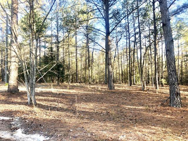 166 Windfall Way, West End, NC 27376 (MLS #203541) :: Pinnock Real Estate & Relocation Services, Inc.