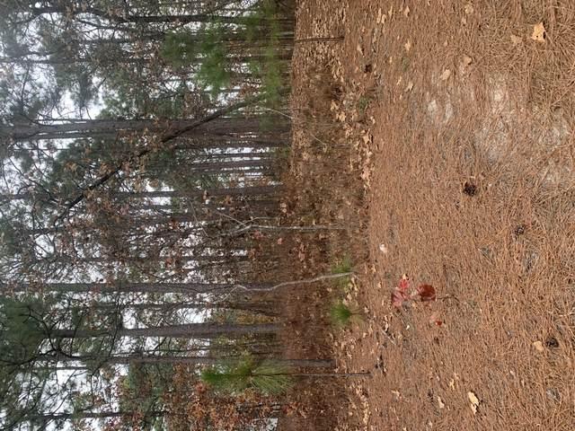 1 Sassafras Lane, Pinehurst, NC 28374 (MLS #203543) :: Pinnock Real Estate & Relocation Services, Inc.