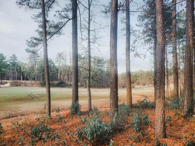 Lot 14 Caddie Court, Wagram, NC 28396 (MLS #203819) :: Pinnock Real Estate & Relocation Services, Inc.