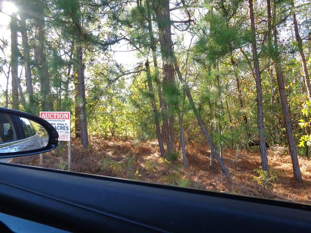 Tbd North Street Lot 316, Hamlet, NC 28345 (MLS #203884) :: Pines Sotheby's International Realty