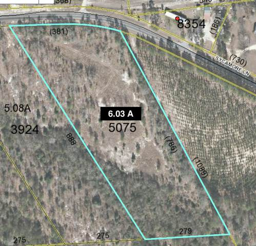 Tbd Sycamore Lane, Jackson Springs, NC 27281 (MLS #203892) :: Pinnock Real Estate & Relocation Services, Inc.