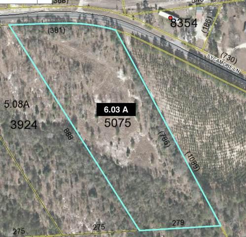 Tbd Sycamore Lane, Jackson Springs, NC 27281 (MLS #203892) :: Towering Pines Real Estate