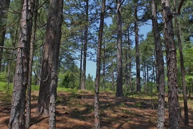 180 Quail Hollow Drive, Pinehurst, NC 28374 (MLS #204167) :: Pines Sotheby's International Realty
