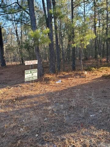 12 Cherry Wood Lane, Cameron, NC 28326 (MLS #204201) :: Pines Sotheby's International Realty