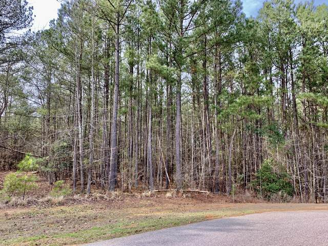 141 N State Lane, Rockingham, NC 28379 (MLS #204298) :: Towering Pines Real Estate