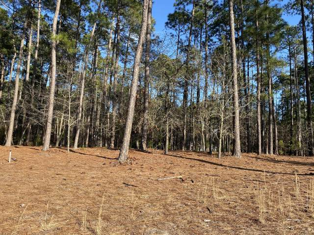 284 Longleaf Drive, West End, NC 27376 (MLS #204549) :: Pinnock Real Estate & Relocation Services, Inc.