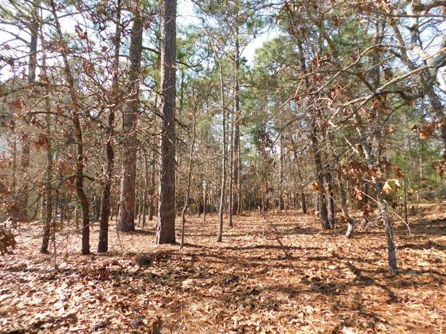 172 Lakeland Port, Sanford, NC 27332 (MLS #204640) :: Towering Pines Real Estate