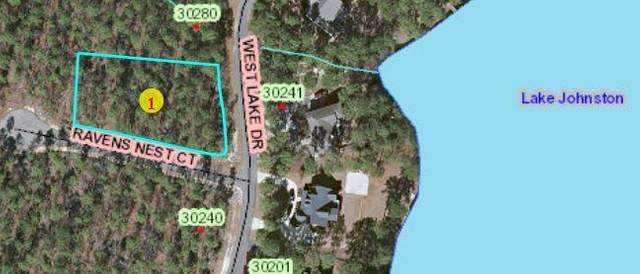 21 West Lake Drive, Wagram, NC 28396 (MLS #204669) :: Pinnock Real Estate & Relocation Services, Inc.