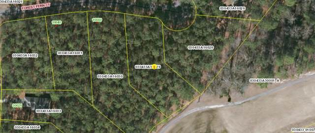 Tbd Forest Fern Court, Wagram, NC 28396 (MLS #204749) :: Pinnock Real Estate & Relocation Services, Inc.