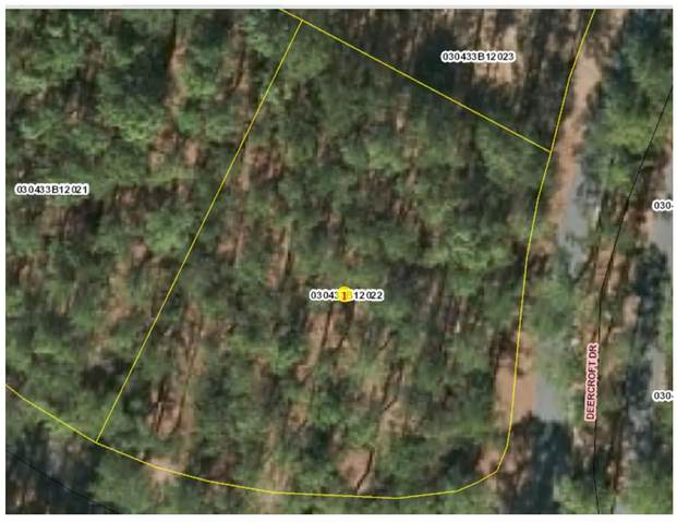 Lot #22 Deercroft Drive, Wagram, NC 28396 (MLS #204770) :: Pinnock Real Estate & Relocation Services, Inc.