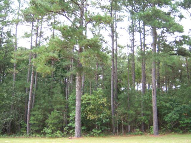 9 Peach Orchard Road, Wagram, NC 28396 (MLS #204991) :: Pinnock Real Estate & Relocation Services, Inc.