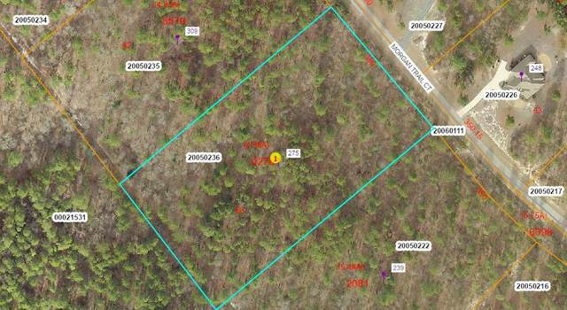 275 Morgan Trail Court, West End, NC 27376 (MLS #205023) :: Towering Pines Real Estate