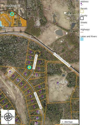 459 Sweet Gum Drive, Vass, NC 28394 (MLS #205111) :: Pinnock Real Estate & Relocation Services, Inc.