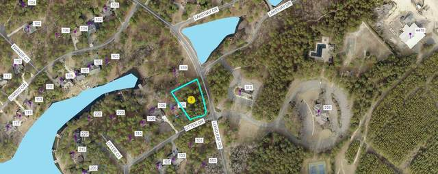 102 Otter Drive, West End, NC 27376 (MLS #205274) :: Towering Pines Real Estate