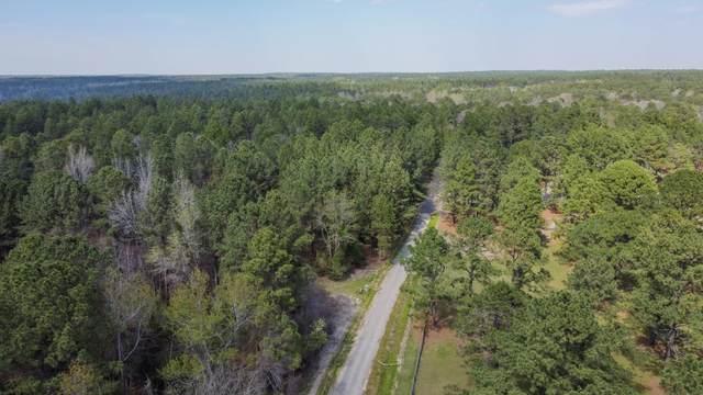 Tbd Rembrandt Lane, Pinehurst, NC 28374 (MLS #205357) :: Towering Pines Real Estate