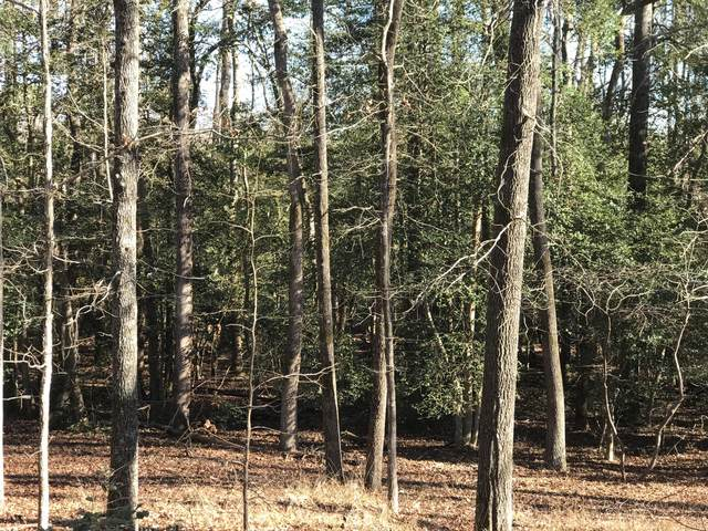 106 Tartan Trail, Southern Pines, NC 28387 (MLS #205450) :: Towering Pines Real Estate