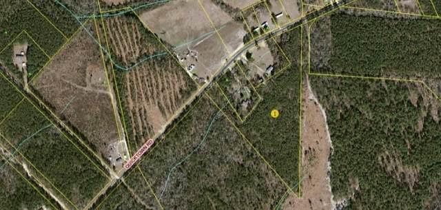 Tbd Quicktown Rd., Hamlet, NC 28345 (MLS #205589) :: Pinnock Real Estate & Relocation Services, Inc.