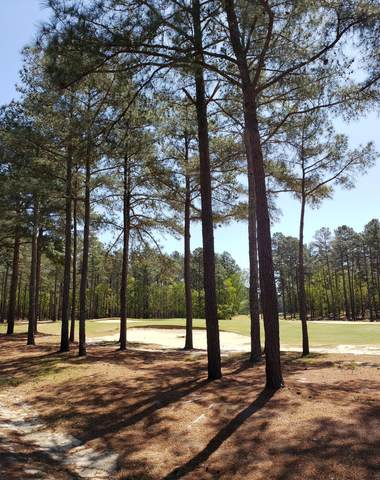 6 Peach Orchard Road, Wagram, NC 28396 (MLS #205639) :: Towering Pines Real Estate