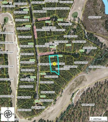 31 Forest Fern Court, Wagram, NC 28396 (MLS #205665) :: Towering Pines Real Estate