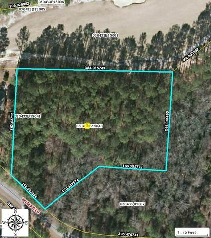 40 Wilidlife Lane, Wagram, NC 28396 (MLS #205666) :: Towering Pines Real Estate