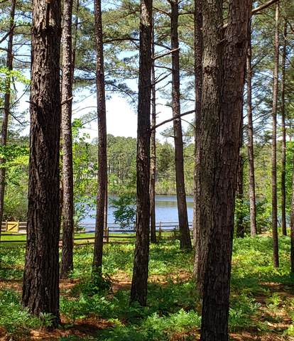 1 Beaver Hill Lane, Wagram, NC 28396 (MLS #205806) :: Towering Pines Real Estate