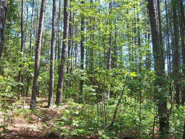 7 Fox Lane, Wagram, NC 28396 (MLS #205827) :: Towering Pines Real Estate