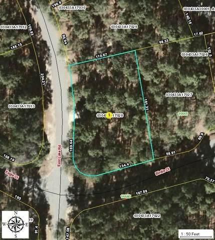 28 Birdie Ct/East Lake Road, Wagram, NC 28396 (MLS #205833) :: Towering Pines Real Estate