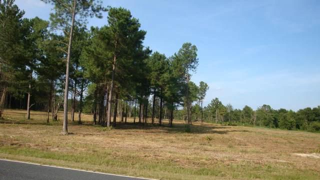 Tbd Hwy Us 1, Rockingham, NC 28379 (MLS #205888) :: Towering Pines Real Estate